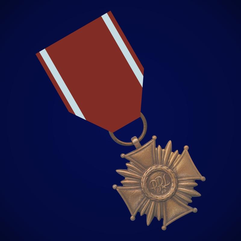 Бронзовый Крест Заслуги (Польша)