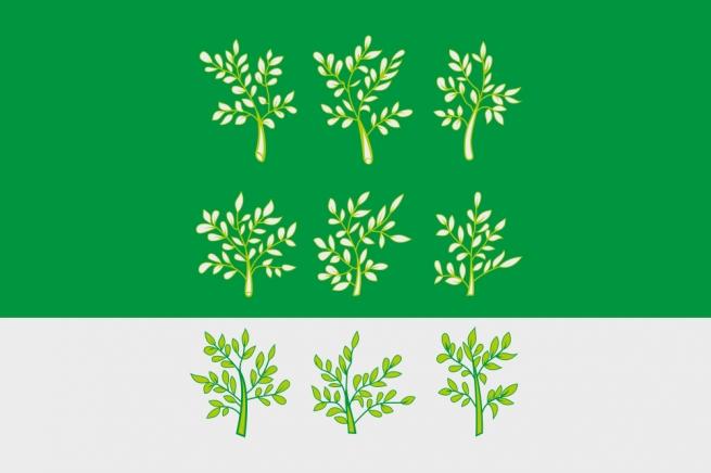 Флаг Богородицкого района