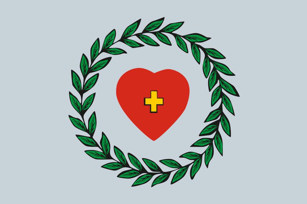 Флаг Боровска