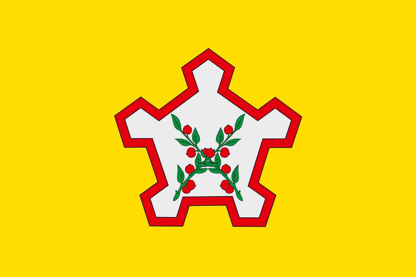 Флаг Чаплыгинского района