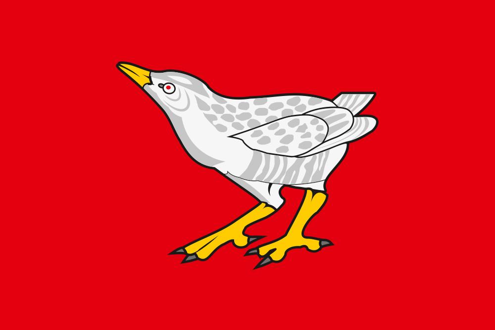 Флаг Дергачёвского района