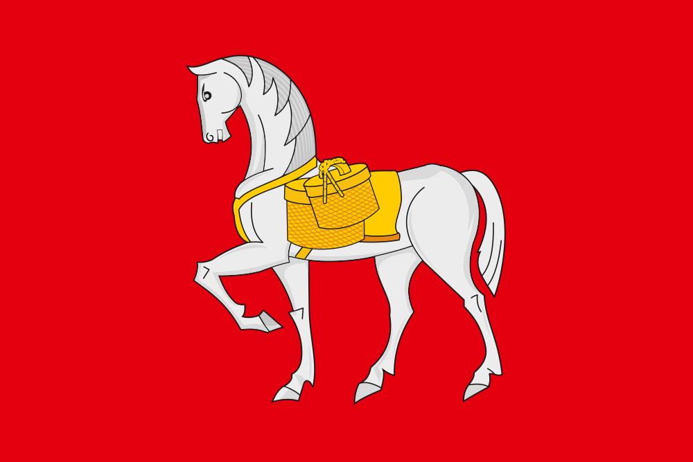 Флаг Коношского района