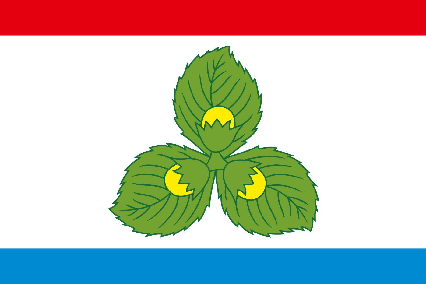 Флаг Краснознаменского района