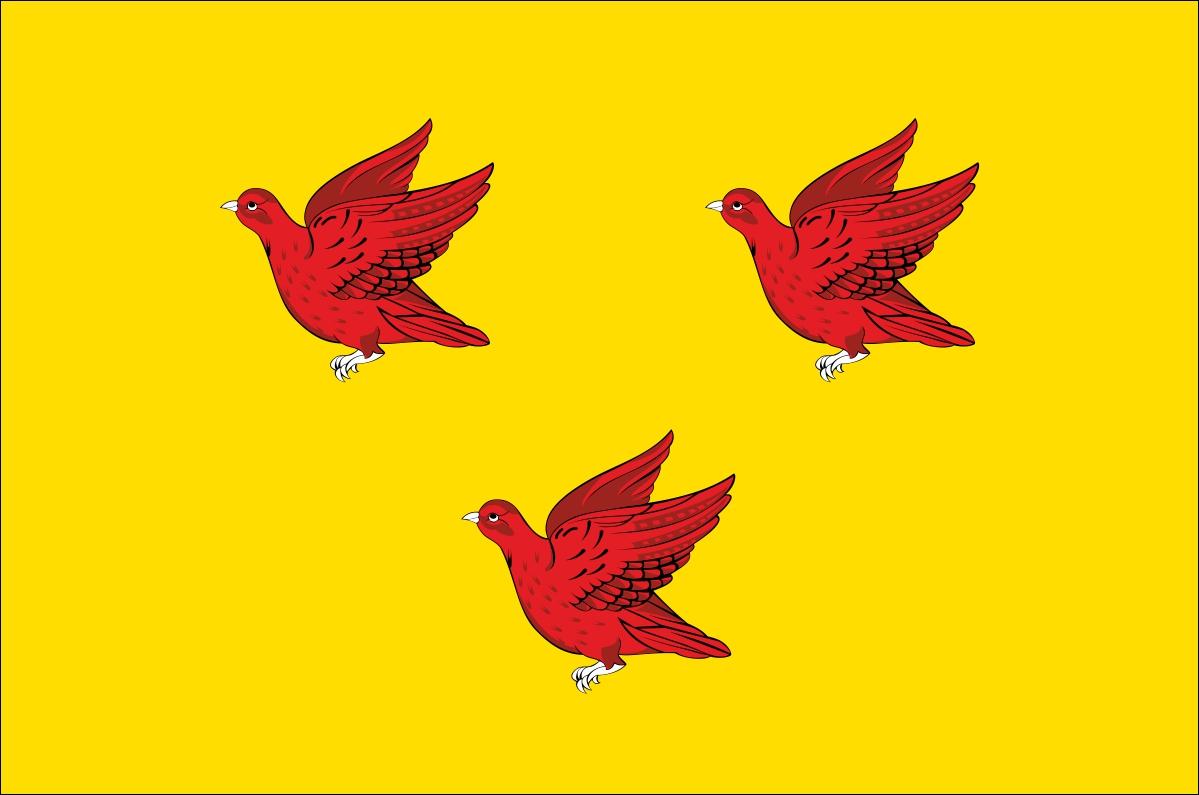 Флаг Ливен