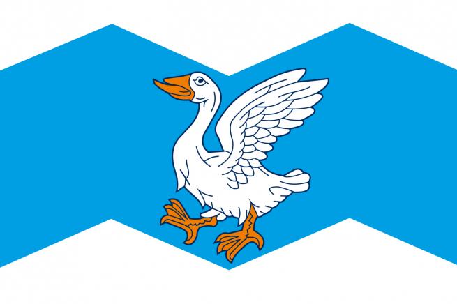 Флаг Шадринского района