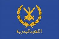 Флаг Сирийского Арабского флота
