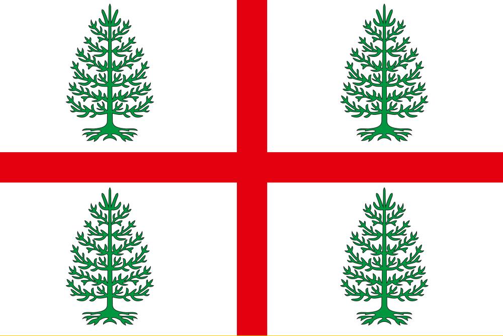 Флаг Судиславского района