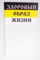 Флажок на палочке «ЗОЖ»