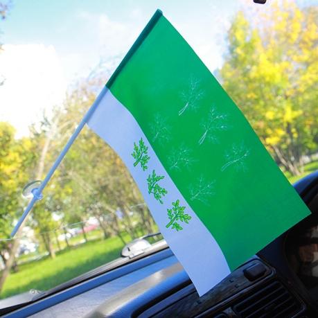 Флажок Богородицкого района в машину