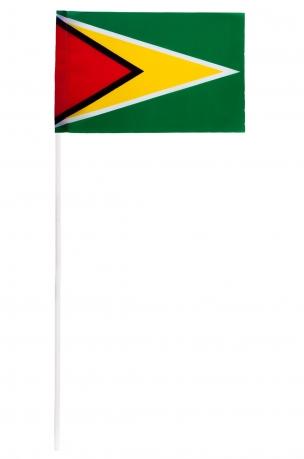 Флажок Гайаны на палочке