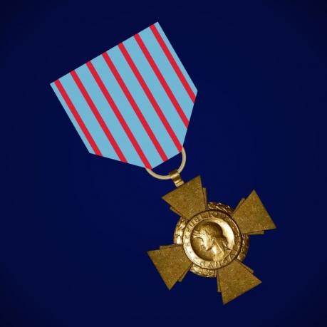Крест бойца (Франция)