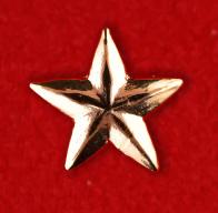 """Нагрудный знак """"Звезда"""""""