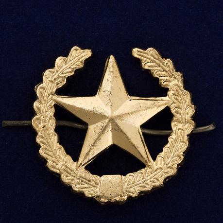 Петличный знак Сухопутных войск