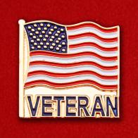 Значок ветеранов США
