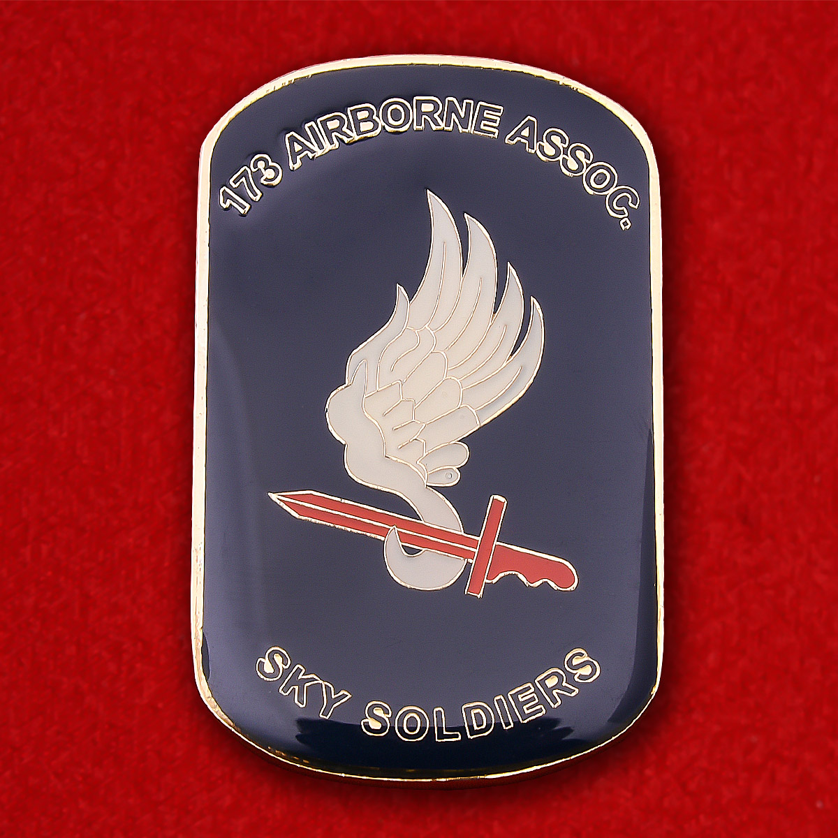 """173rd Airborne Brigade Assoc. """"Sky Soldiers"""" Challenge coin"""
