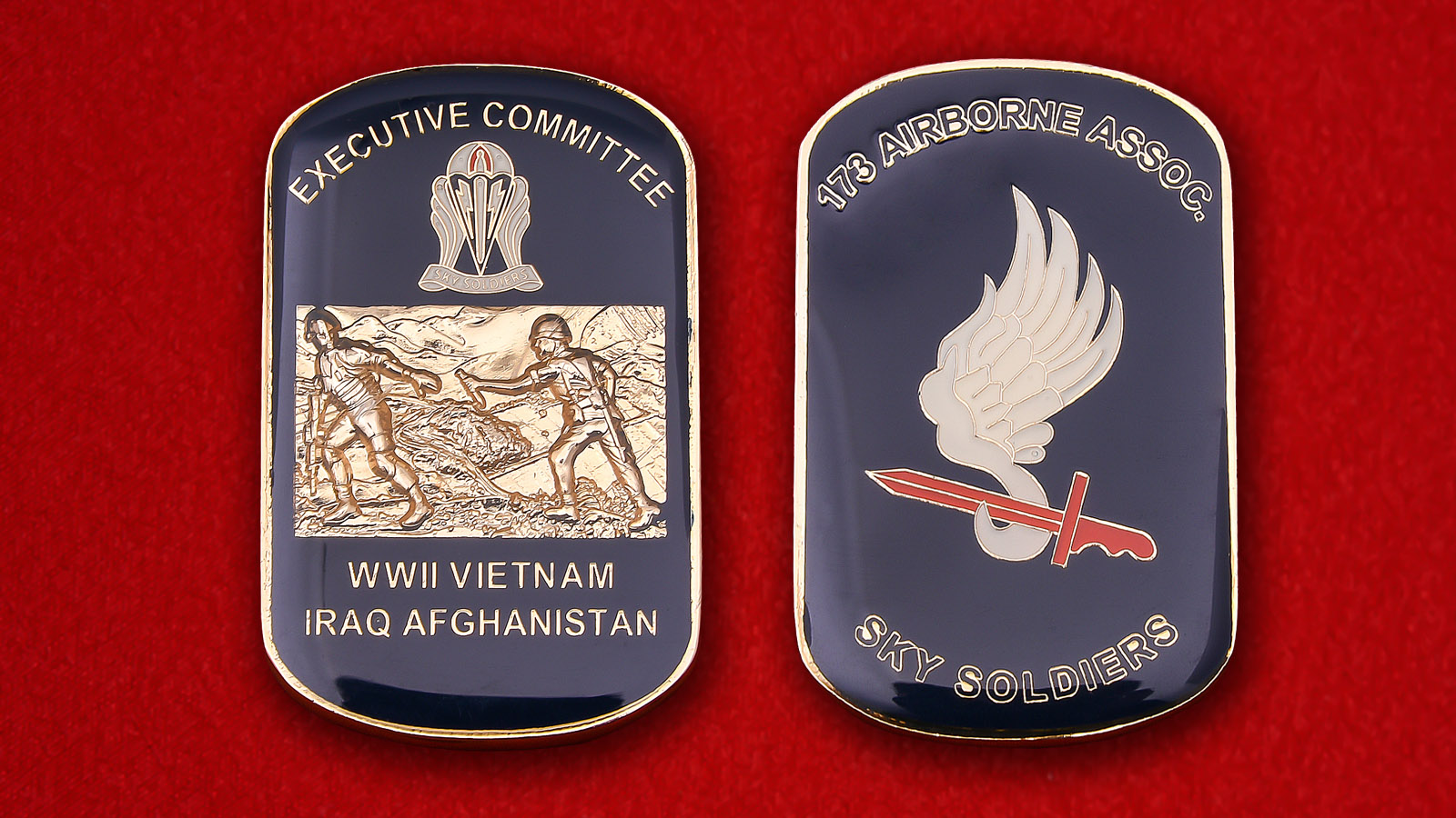 "173rd Airborne Brigade Assoc. ""Sky Soldiers"" Challenge coin"