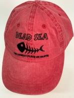 Бейсболка джинс Dead Sea с вышитым черным скелетом рыбы