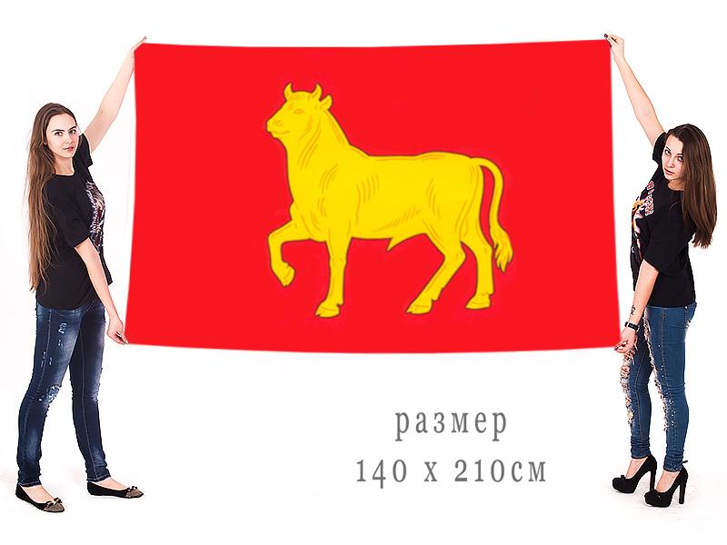 Большой флаг города Куйбышев