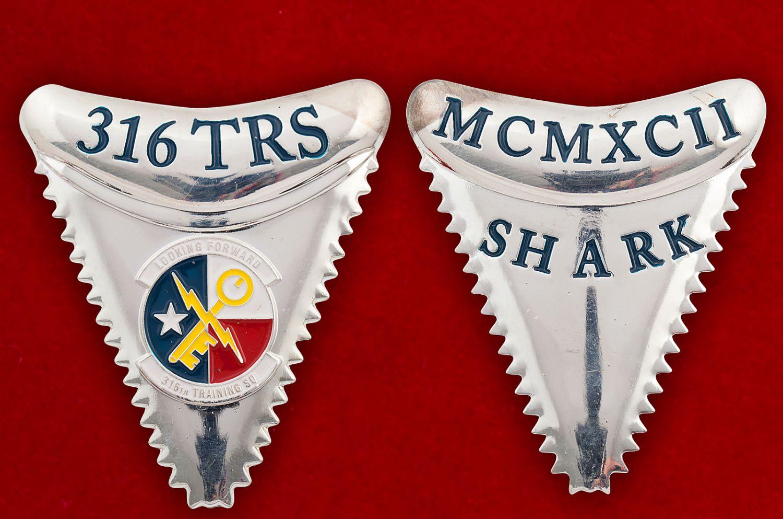 Челлендж коин 316-й Учебной эскадрильи ВВС США - аверс и реверс