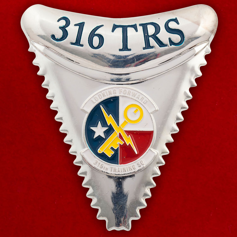 Челлендж коин 316-й Учебной эскадрильи ВВС США