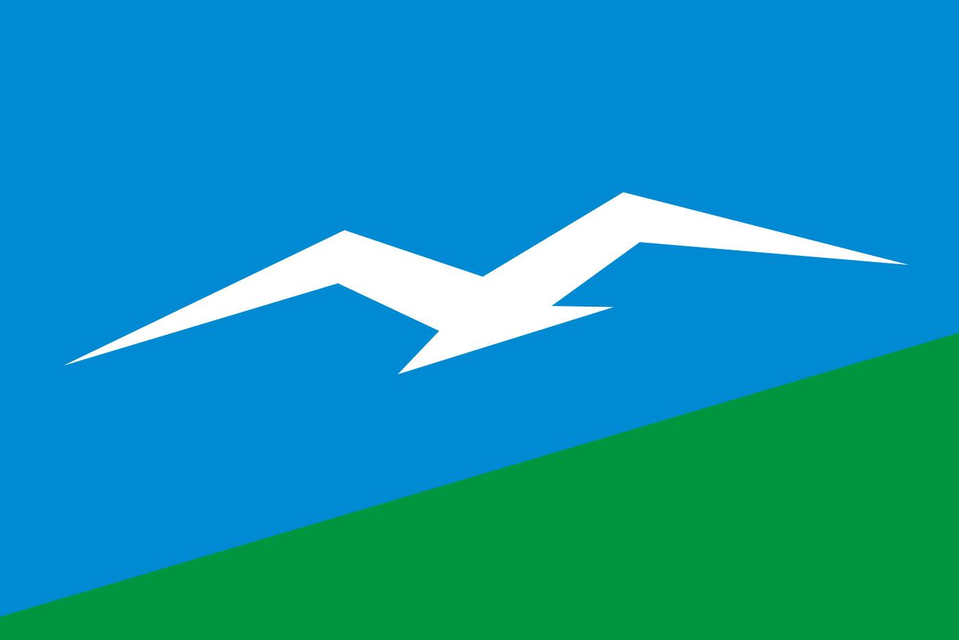 Флаг Анивского района