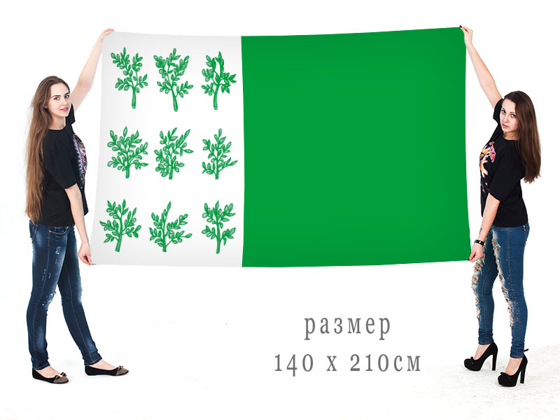 Большой флаг Богородицка