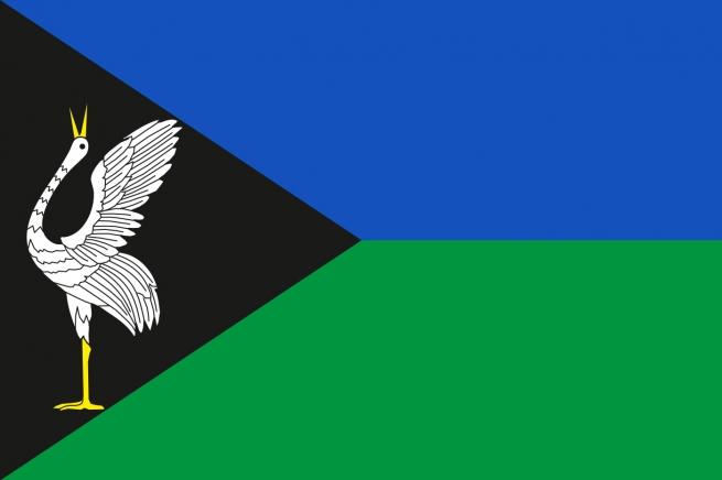 Флаг Борзинского района