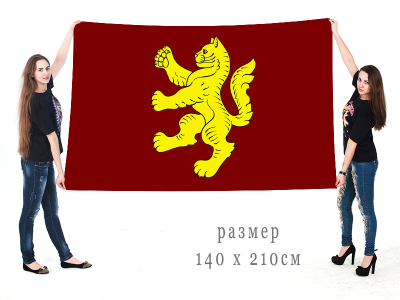 Большой флаг города Котово