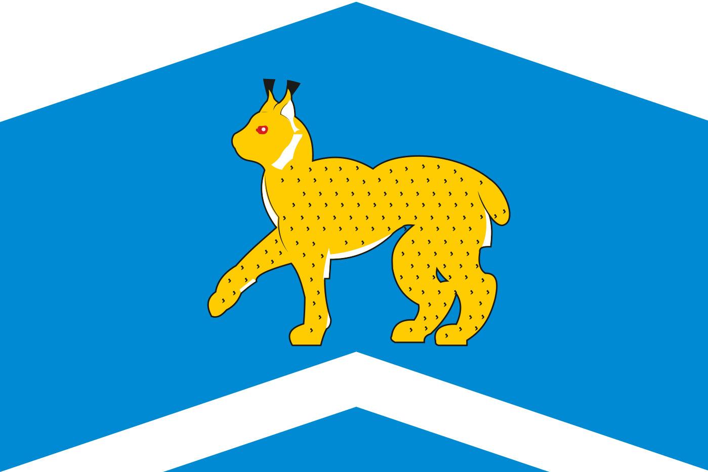 Флаг Исетского района