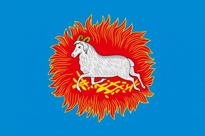Флаг Каргополя