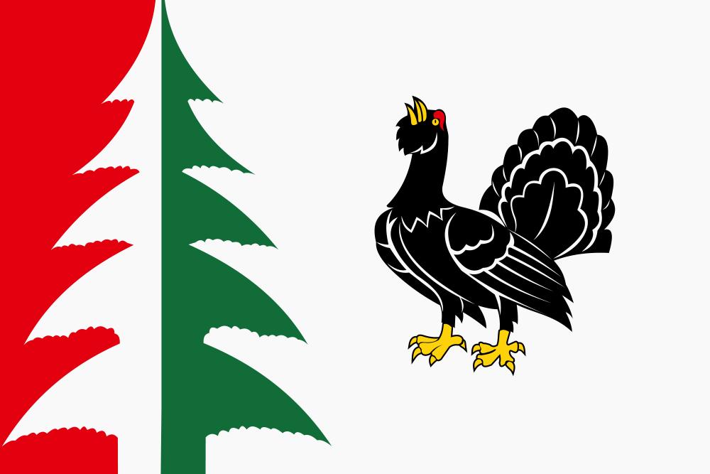 Флаг Лесного района
