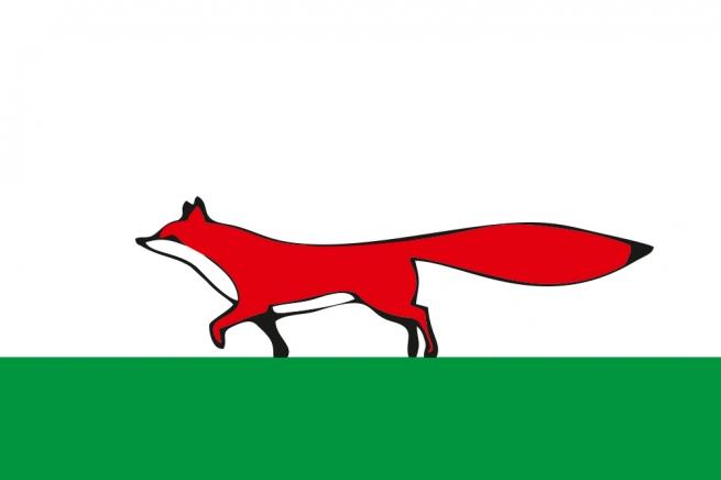 Флаг Мезенского района