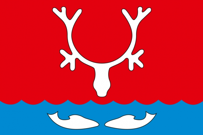 Флаг Нарьян-Мара