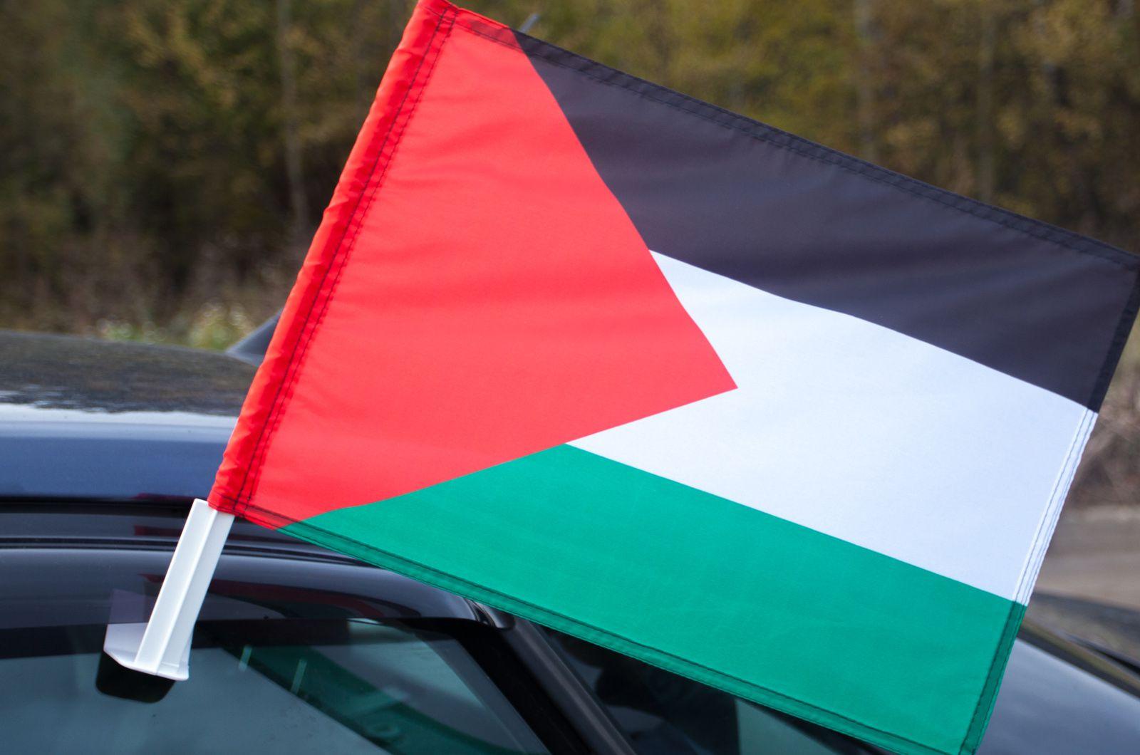 Флаг Палестины на машину