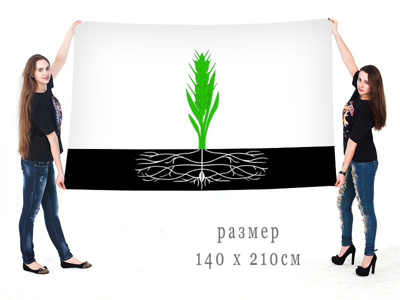 Большой флаг Починковского муниципального района