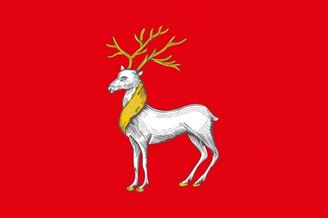Флаг Ростова