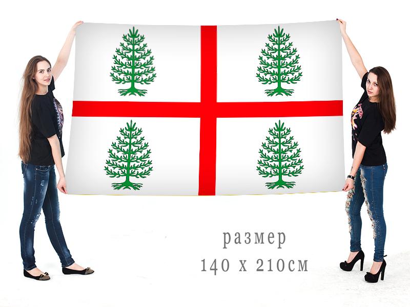 Большой флаг Судиславского района