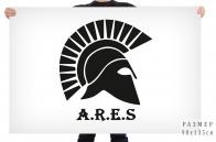 Флаг ЦВСИ Ares