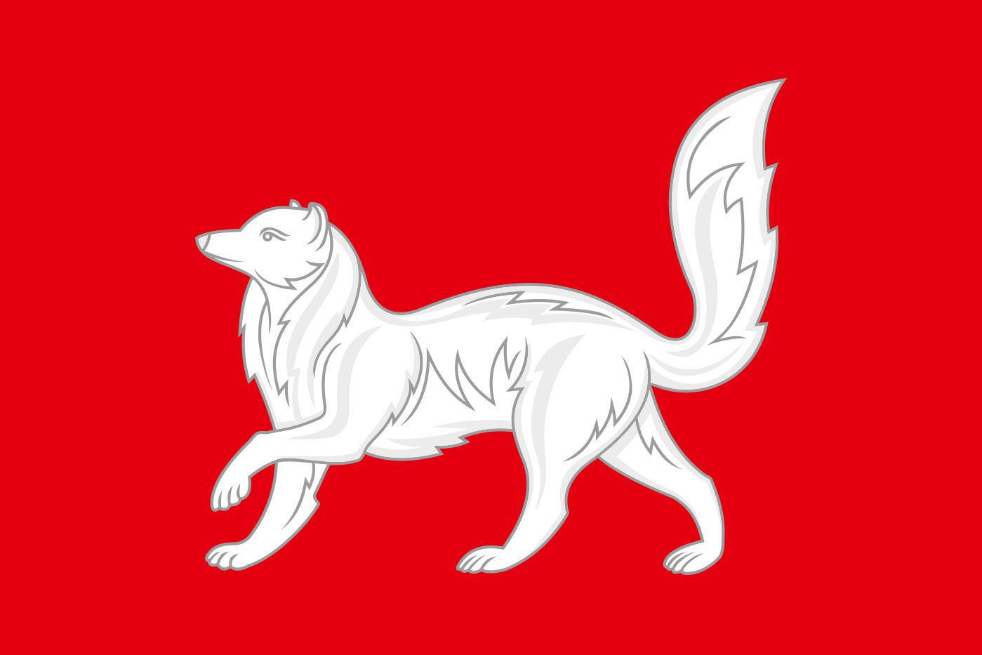 Флаг Туруханского района