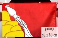Флаг Воронежской области 40x60 см