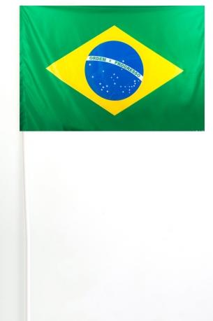 Флажок Бразилии на палочке