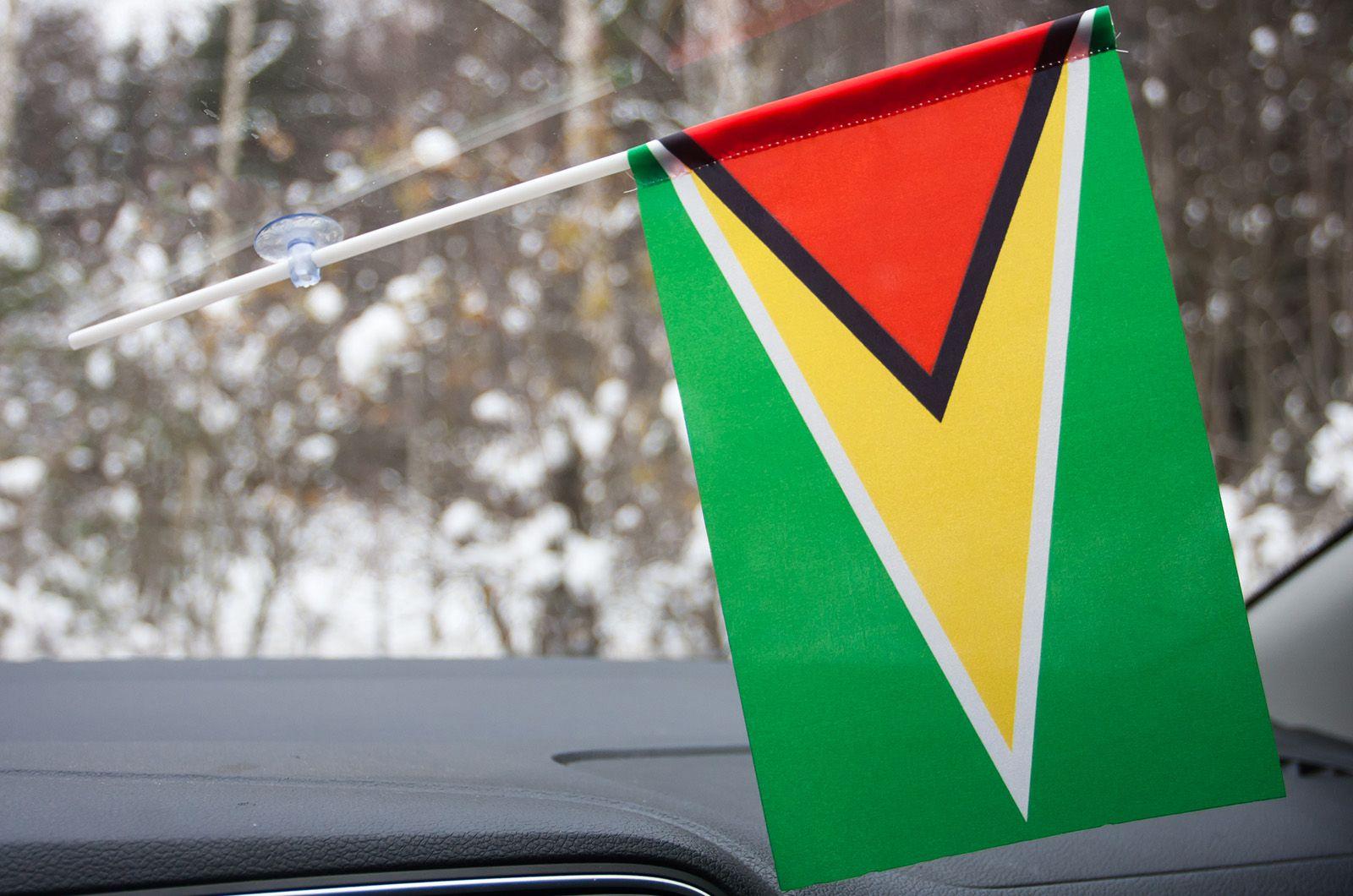 Флажок Гайаны в машину