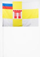 Флажок Ставрополя на палочке