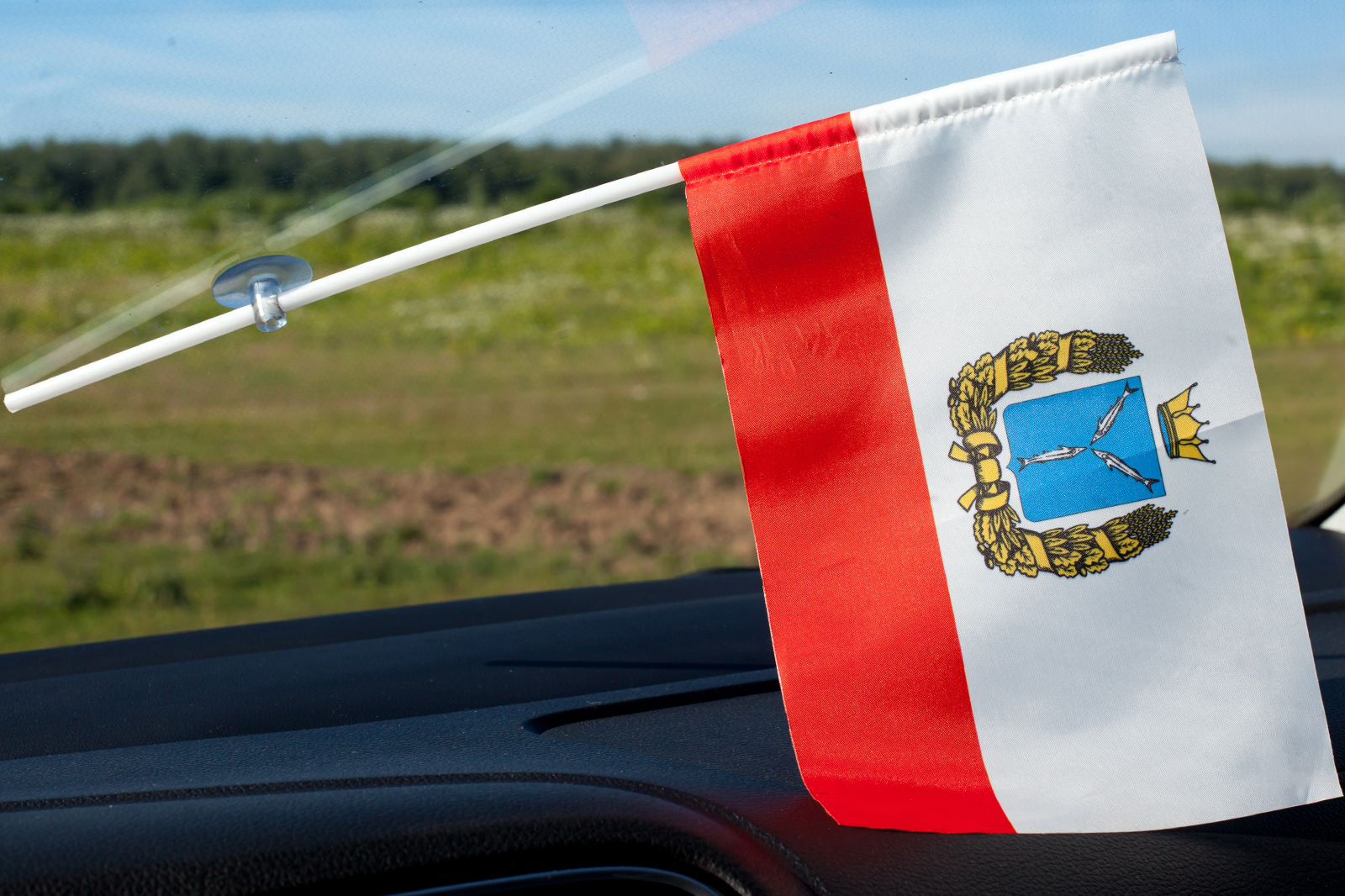 Флажок в машину с присоской Саратовской области