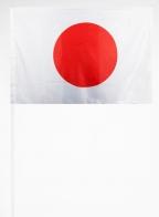 Флажок Японии