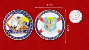 Florida Air National Guard Challenge Coin - comparative size