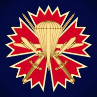 Фрачник с малой эмблемой 45-ого отдельного разведывательного полка спецназа ВДВ