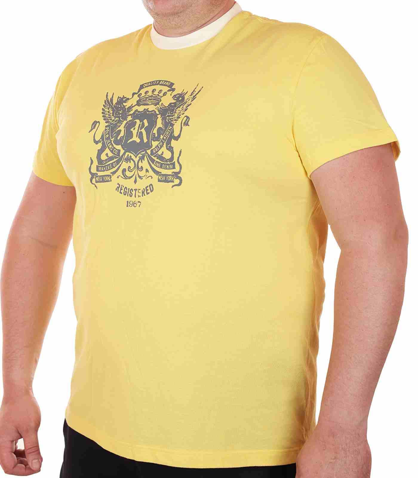 Гламурная футболка Ralph Lauren (США) для модных парней-главная
