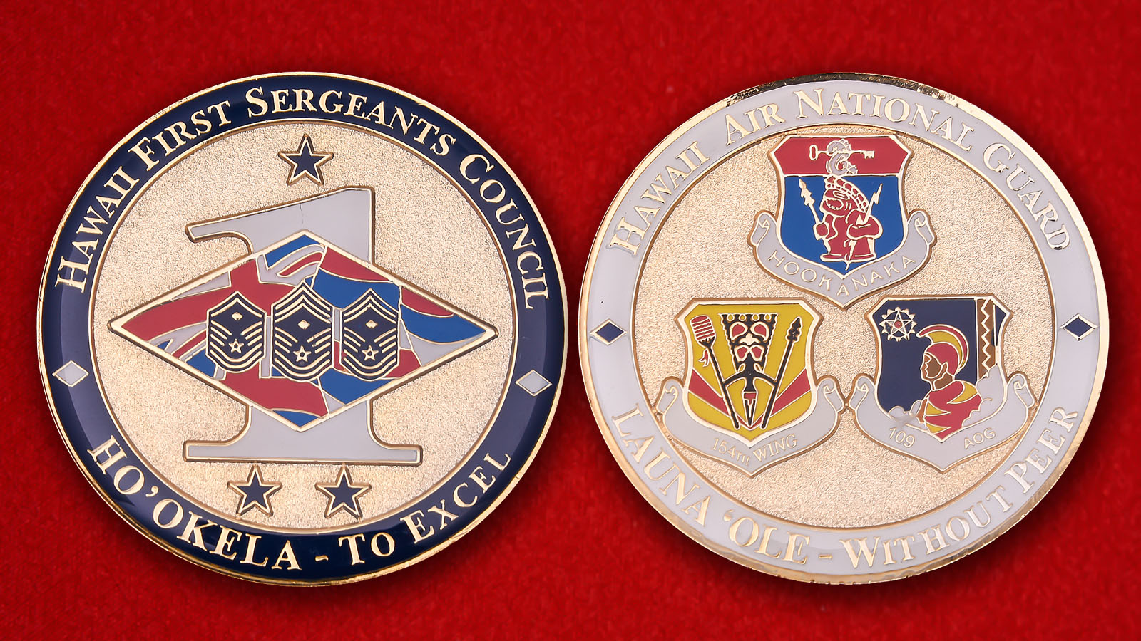 Hawaii Air National Guard First Sergeants Council Challenge Coin