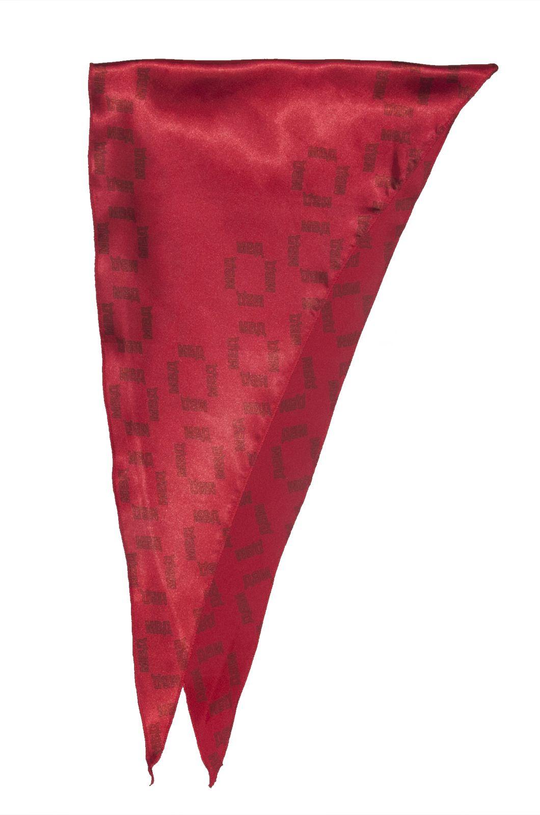 Женский шейный платок полиции